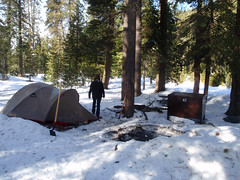 Camp in Sequoia NP