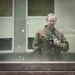 Focused Blur by John Fraissinet