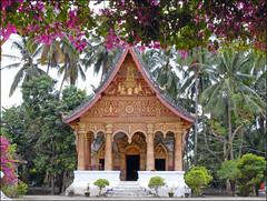 Wat Pa Phai