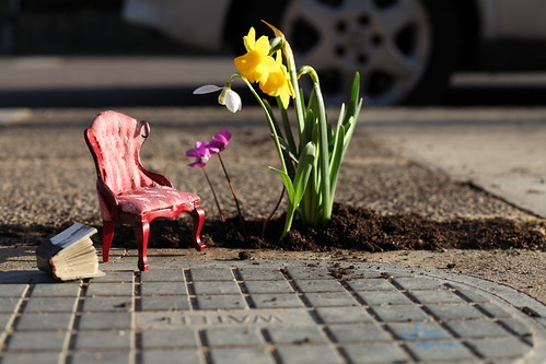 Pothole_garden_5