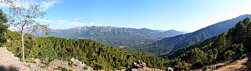 france nature montagne corse corsica vert panasonic bleu ciel arbres nuages forêt bois maquis branche végétation méditerrannée