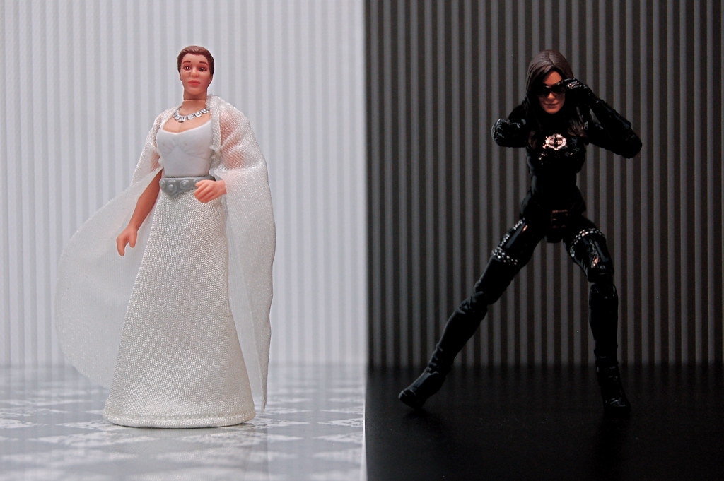 Princess Leia vs. Baroness (108/365)