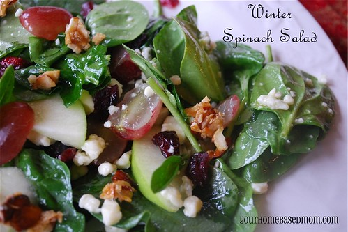 Winter Spinach Salad Your Homebased Mom