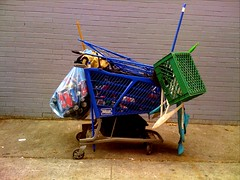 aircraft(0.0), vehicle(0.0), cart(0.0), toy(0.0), shopping cart(1.0),