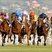 """Dettori wins in Rome in 2009 ... by Claudio Gennari ...""""Cogli l'attimo ferma il tempo"""""""
