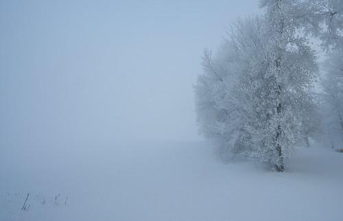 snow cold minnesota fog hoarfrost
