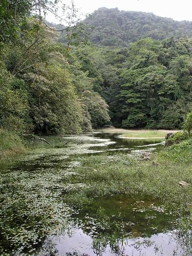 mountains latinamerica water forest landscapes parks panama centralamerica 2007 centroamerica veraguas américalatina gpsapproximate