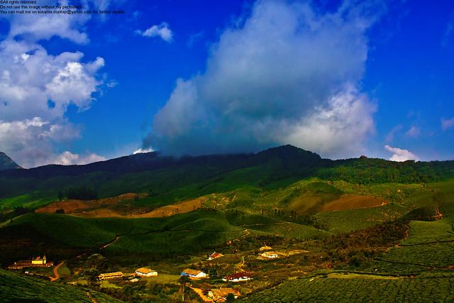Tea estates : from a high point near Munnar