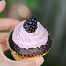 Chocolate cupcakes/blackberry buttercream by Adventuress Heart