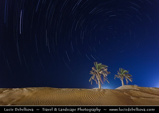 Kuwait - Star Trails over Two Palm Trees in the Desert