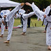 Kukkiwon Taekwondo Demonstration Team