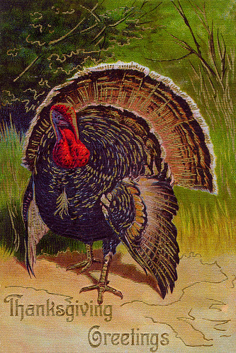 Vintage Turkey lookin' fly