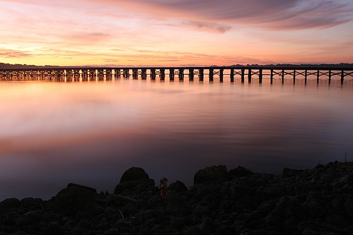 longexposure railroad morning trestle motion water sunrise river landscape dawn nc timelapse colorful waterfront shoreline scenic calm sirene washingtonnc pamlico riverscape waterwat jaygetsinger