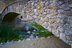Under the Bridge - San Jose, California, USA