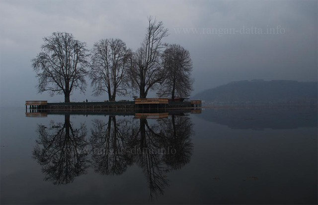 Char Chinar, Dal Lake, Srinagar