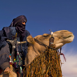 Tuareg and camel - Libya