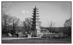 Le monastère bouddhiste de Rancon