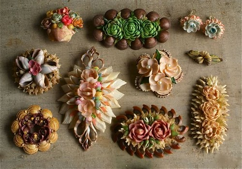 seashell jewelry collection