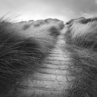 Through the dunes, West Wittering