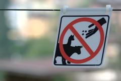 Nekrmte lamy! / Don't Feed the Llamas!