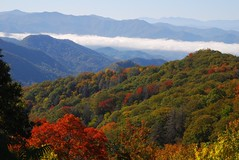 Great Smoky Mountains National Park Overlook