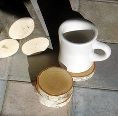 Natural White Birch Wood Coasters-Set of 4