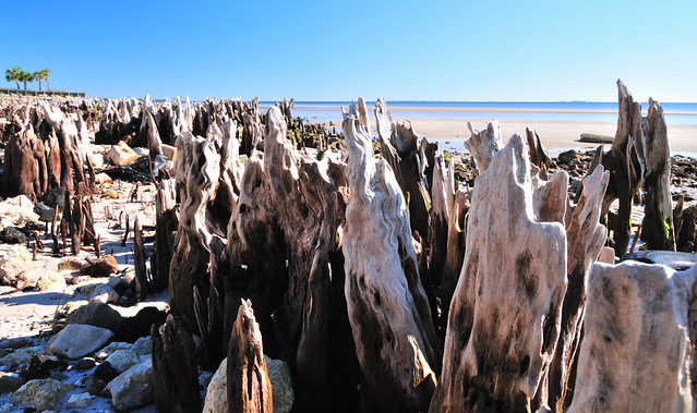 Carrabelle Beach Weather January