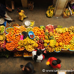Fruit from Above - Chachapoyas, Peru