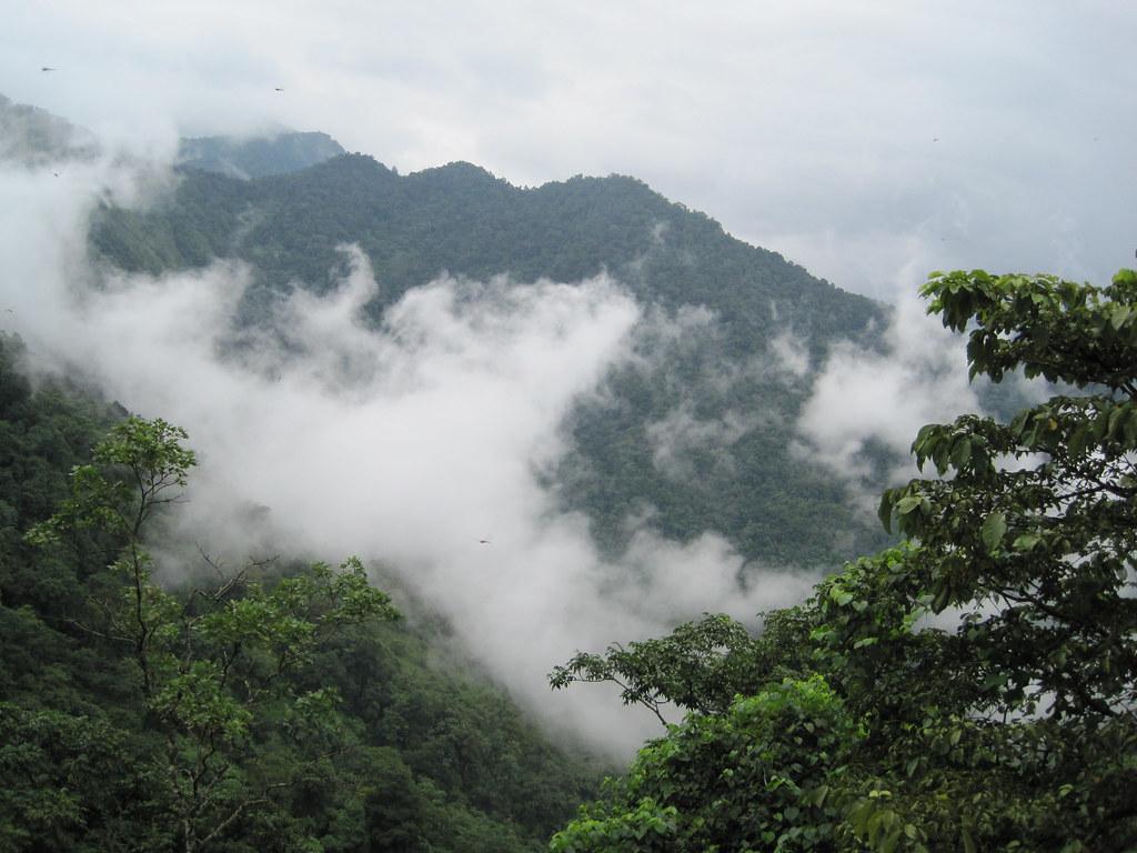 Cochin-Calicut-Mysore 033