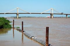 Pumarejo bridge