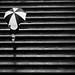 Rainy days by paulo medeiros