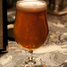 Pliny the Elder 003