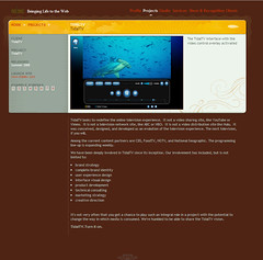 Website 2005 (Business to Business)