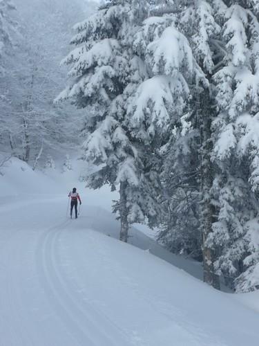 Nieve y tranquilidad
