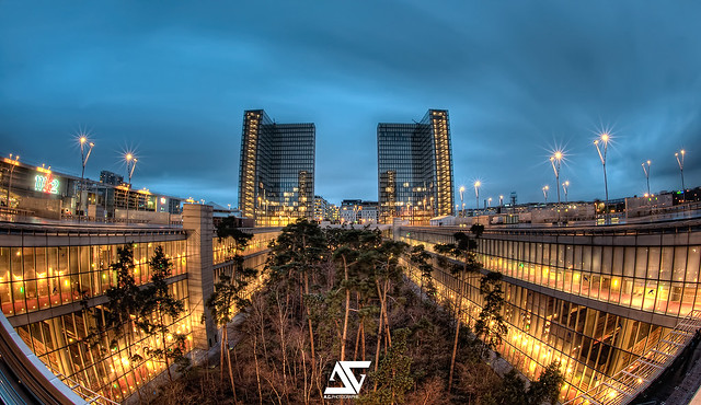 Jungle city