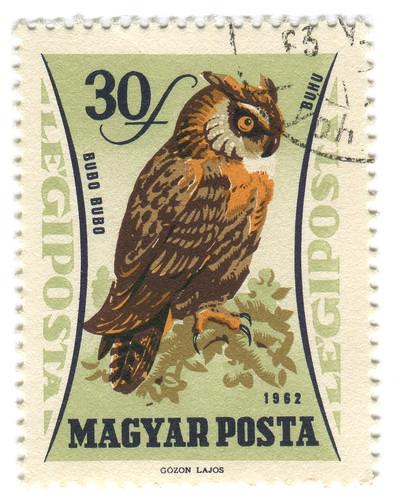 Hungary Postage Stamp: owl by karen horton
