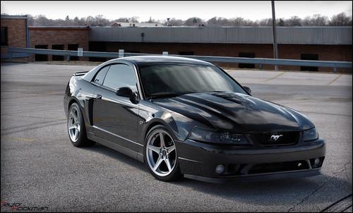 Evolution Photoshoot F14s Wheels Mustang Forgestar Forum New