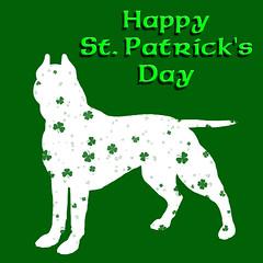 Happy St. Patrick's Day, Pit Bull Dog