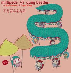 dung beetles millipede