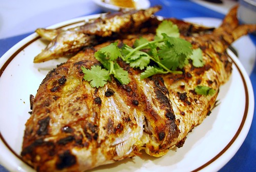 Grilled fish photo by avlxyz