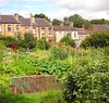 Lowerhouses allotments