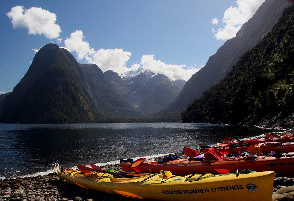 Milford Sound Kayak - New Zealand