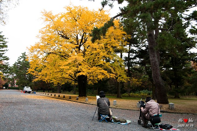 1119_kyoto_0907