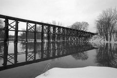 Trestle reflections