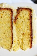 citrus(0.0), lemon(0.0), babka(0.0), produce(0.0), cake(1.0), baking(1.0), baked goods(1.0), food(1.0), sponge cake(1.0), dish(1.0), dessert(1.0), cuisine(1.0),