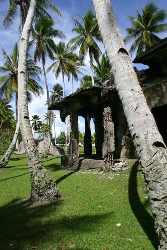 tree island ruins war coconut palm worldwarii battlefield kwajalein cocos pacificisland atoll roinamur nationalhistoriclandmark arecaceae kwajaleinatoll republicofthemarshallislands warinthepacific cocosnucifera warruins warrelics roinamurbattlefield