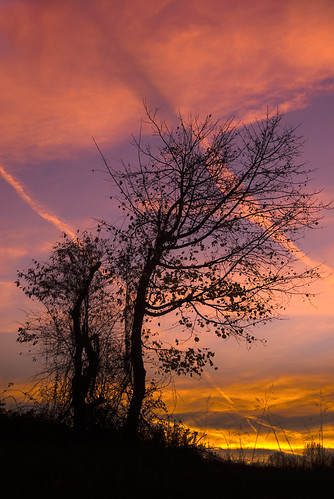 park autumn sunset tree leaves creek state marsh trials vapour dragondaggerphoto dragondaggeraward yourwonderland