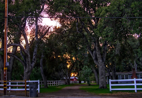 ranch trees sunset fence dirtroad garbagecan sandcanyon