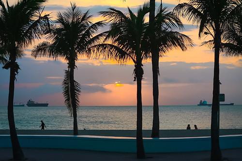 ftlauderdalefl miamifl seashore seascape coconuttree walking waterways walkingaround earlyinthemorning sunrise colors travelling tourism urban urbanexploration unitedstates outdoors