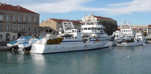 Port vendres disparition des deux tiers de la flotte de thoniers le blog du mpf 66 - Office du tourisme de port vendres ...